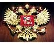 Получение  лицензии МЧС в Краснодаре, фото — «Реклама Краснодара»