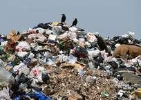 Два сочинца организовали на своих участках мусорные полигоны, фото — «Рекламы Новокубанска»
