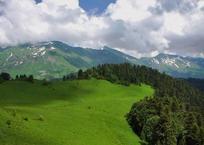 Национальный парк в Сочи – стоит побывать! ФОТО, фото — «Рекламы Кропоткина»