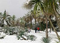 Что можно делать в Сочи зимой?, фото — «Рекламы Темрюка»
