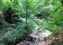 Волконское ущелье - феномен Сочи ФОТО, фото — «Рекламы Темрюка»