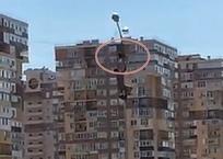 ВИДЕО: Мужчина спасает застрявшего на столбе ворона в Краснодаре, фото — «Рекламы Краснодара»