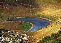 Озеро Псенодах в Краснодарском крае - удивительная красота! ФОТО, ВИДЕО, фото — «Рекламы Хадыженска»