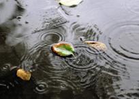 Пасмурно, дожди, похолодание – погода в Краснодарском крае, фото — «Рекламы Хадыженска»