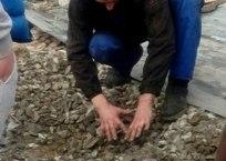 Стало известно, за что живодер из Геленджика зверски убил щенков: видео допроса, фото — «Рекламы Тихорецка»