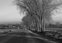 Category_road_111923_960_720