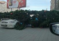 Ураган в Новороссийске ломал деревья, корежил авто, сносил ларьки и конструкции, фото — «Рекламы Курганинска»