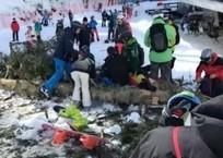 В Сочи 20-метровое дерево упало на катавшуюся на склоне сноубордистку, фото — «Рекламы Хадыженска»