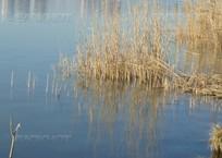 Три человека утонули при опрокидывании лодки в Краснодарском водохранилище, фото — «Рекламы Кубани»
