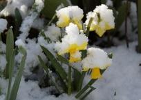 Ждать ли потепления на Кубани, рассказали синоптики, фото — «Рекламы Краснодара»
