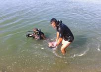 В Славянском районе Кубани в реке утонула девушка, фото — «Рекламы Адлера»