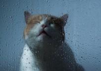 Синоптики прогнозируют в Краснодарском крае грозовые дожди, фото — «Рекламы Крымска»