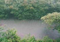 Category_raining_828890_960_720