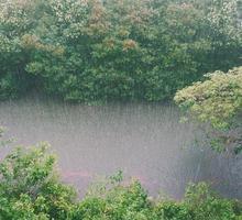Mini_raining_828890_960_720