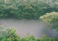 Уровень воды в реке Кубань достиг опасных отметок, фото — «Рекламы Кропоткина»