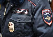 На Кубани больше часа пчелы не давали полицейским подойти к месту ДТП, фото — «Рекламы Краснодара»