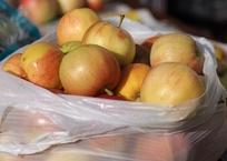 Двое мужчин украли 264 кг яблок в Краснодаре , фото — «Рекламы Краснодара»