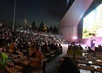 Ночь кино 2018 в Краснодаре: полная афиша мероприятий, фото — «Рекламы Краснодара»