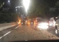 Упавшее дерево создало пробку на трассе под Адлером, фото — «Рекламы Кубани»