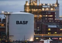 Category_2032803733_basf_oxujydm5yef
