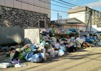 В горе мусора рядом с домами краснодарцев поселились крысы, фото — «Рекламы Краснодара»