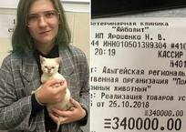 Девушка, отдавшая 340 тысяч на спасение животных в Майкопе, отказалась от помощи в покупке авто ВИДЕО, фото — «Рекламы Славянска-на-Кубани»