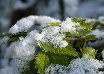 Резкое похолодание придет на Кубань в ближайшие дни, фото — «Рекламы Кубани»