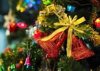 Category_the_christmas_tree_1081321_960_720