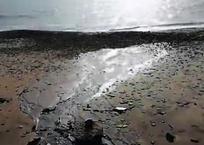 Базы отдыха сливают канализацию в море в Темрюкском районе ВИДЕО, фото — «Рекламы Кубани»