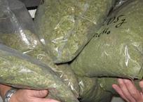 У двоих жителей Горячего Ключа нашли более 6 кг марихуаны, фото — «Рекламы Кубани»