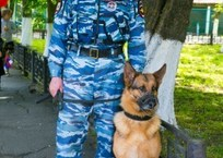 Приморско-Ахтарские полицейские раскрыли кражу вина с помощью собаки, фото — «Рекламы Приморско-Ахтарска»