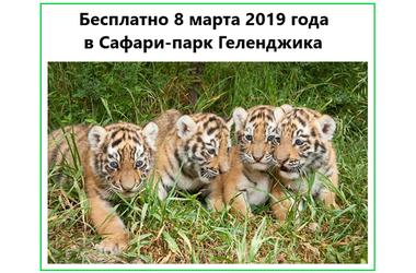Сафари-парк Геленджика приглашает женщин бесплатно посетить зоопарк и прокатиться на канатке, фото — «Рекламы Геленджика»