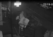 В Краснодаре грабитель унес домик для кота из ветаптеки ВИДЕО, фото — «Рекламы Краснодара»