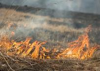 Category_c589583b4c7979783e93229ae679bb27