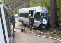 Маршрутка врезалась в дерево на Кубани: погибли две девочки, фото — «Рекламы Анапы»