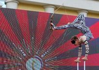 Стрельба из лука ногами: циркачка из Краснодарского края вслепую установила рекорд России ВИДЕО, фото — «Рекламы Новороссийска»