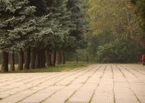 Начало недели на Кубани будет ясным, теплым и туманным, фото — «Рекламы Хадыженска»