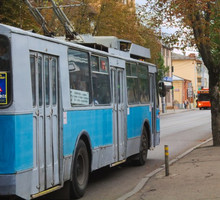 Mini_trolleybus