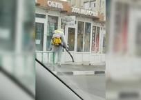 В Геленджике проводится антивирусная обработка общественных мест ВИДЕО, фото — «Рекламы Геленджика»