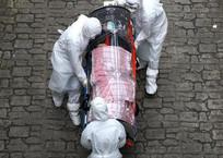 В Геленджике за сутки зарегистрировано еще 5 случаев коронавируса, фото — «Рекламы Геленджика»
