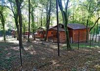 Базу отдыха в лесу под Геленджиком решили снести , фото — «Рекламы Геленджика»