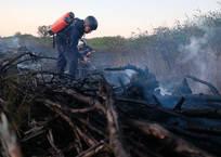 В трех районах Кубани объявили самый высокий класс пожарной опасности, фото — «Рекламы Геленджика»