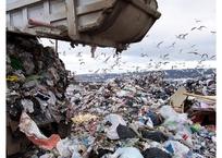 В Сочи ликвидируют стихийную свалку, фото — «Рекламы Темрюка»