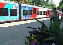 """Жители и гости Сочи жалуются на неразбериху с ценами на проезд в """"Ласточках"""", фото — «Рекламы Темрюка»"""