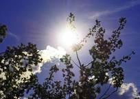 На Кубани ожидается жара, но с 30 сентября синоптики прогнозируют похолодание, фото — «Рекламы Геленджика»