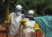 Россия зарегистрировала самое эффективное лекарство от вируса Эбола, фото — «Рекламы Адлера»