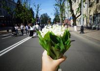 На майские праздники жители Кубани отдохнут семь дней, фото — «Рекламы Армавира»