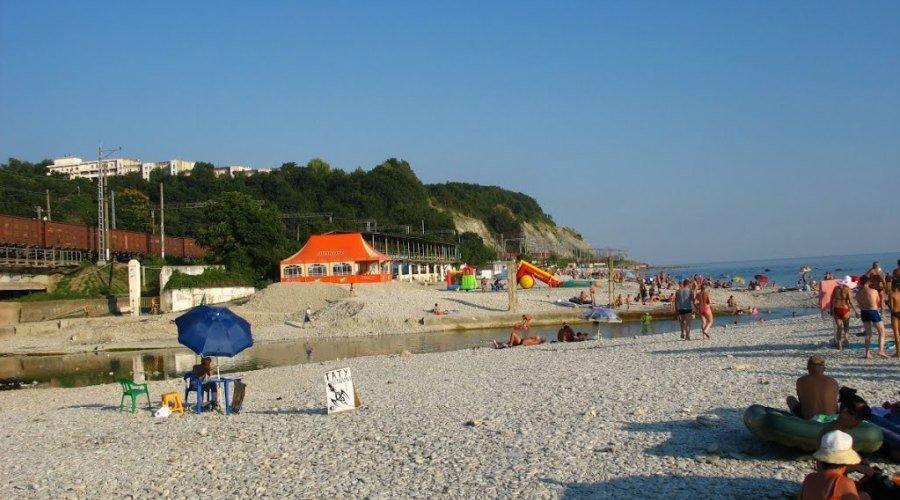 дело раскрытым шепси фото города и пляжа обильное длительное цветение