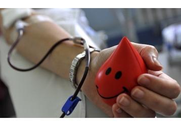 Донорство крови в Геленджике - куда обращаться, фото — «Реклама Геленджика»