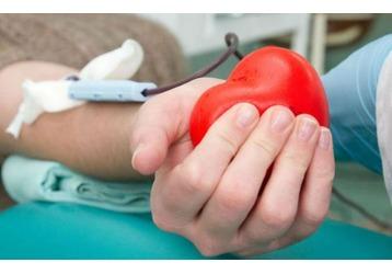 Как стать донором крови в Сочи, фото — «Реклама Сочи»